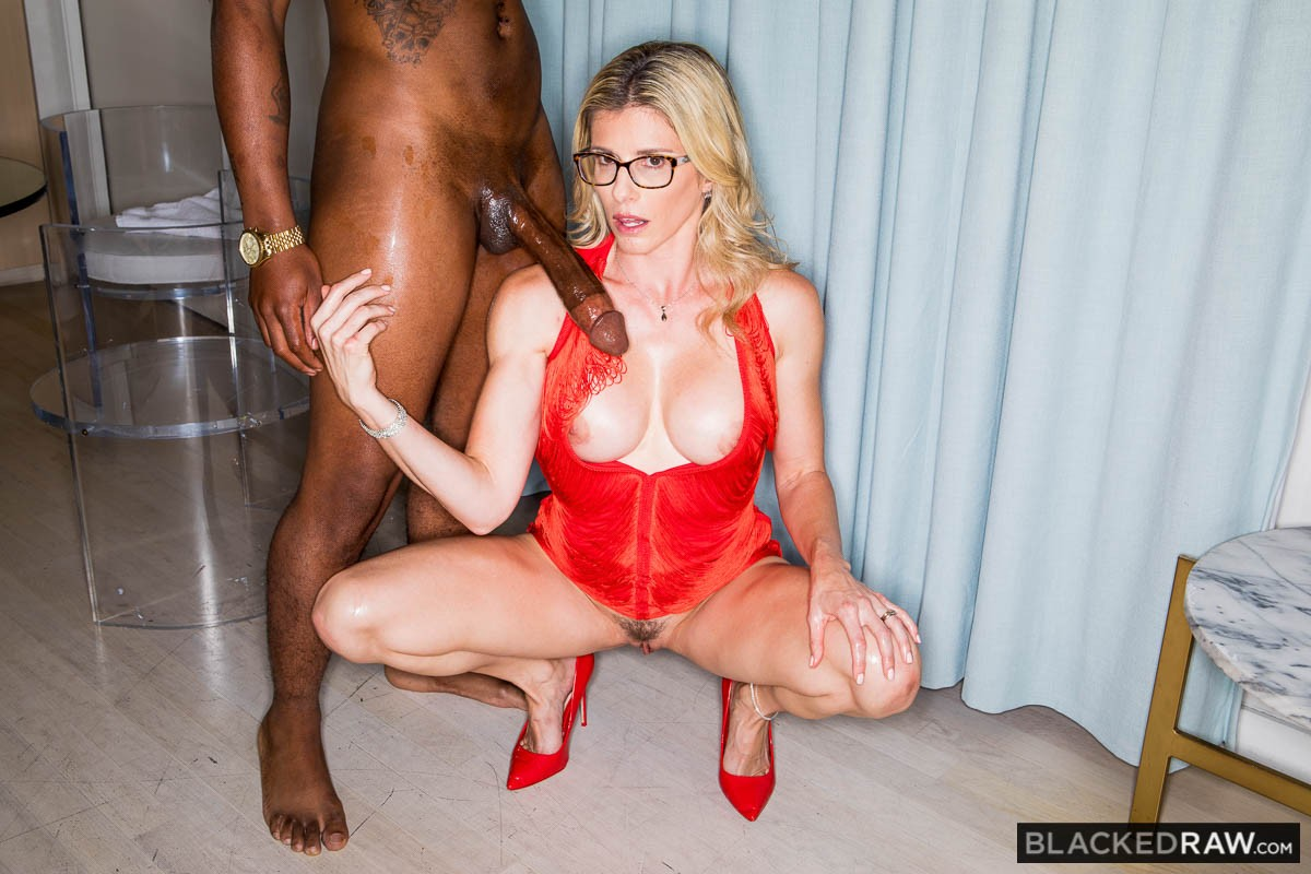 Постер:Cory Chase - The Chase Is On (2019) SiteRip