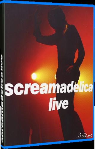Primal Scream - Screamadelica Live (2011, Blu-ray)