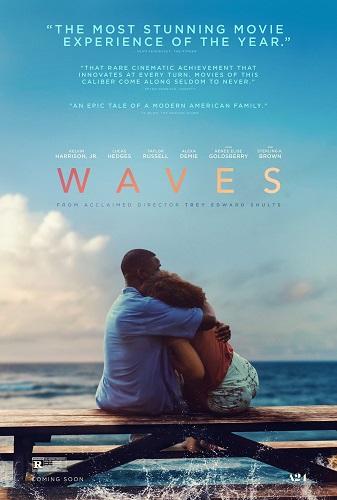 Waves 2019 1080p WEB-DL H264 AC3-EVO