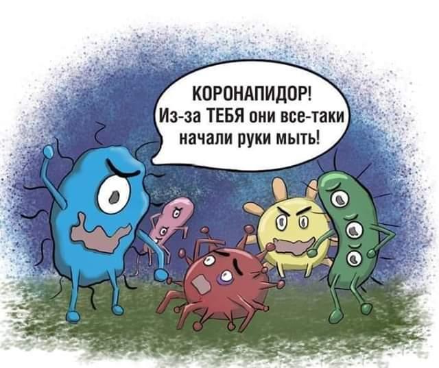 https://i2.imageban.ru/out/2020/03/29/292921064037134bf00a78fe43849063.jpg