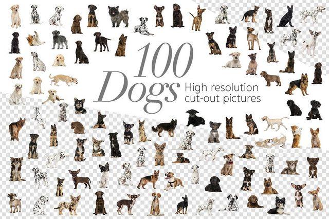 Растровый клипарт - Creative Market - 100 Dogs Bundle - Cut-out Pictures - 2042414 [PNG]