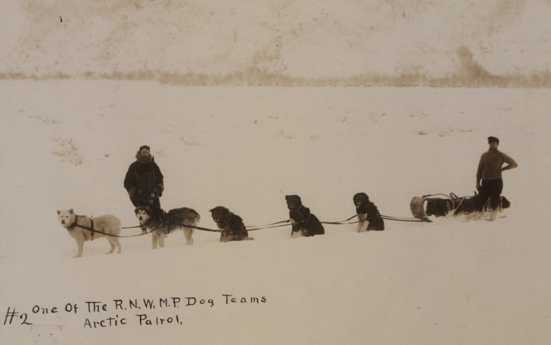One_of_the_Royal_North_West_Mounted_Police_dog_teams_arctic_patrol_No_2_(HS85-10-22039).jpg