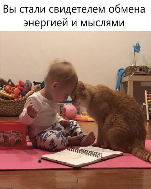 https://i2.imageban.ru/out/2021/07/22/7173a2ea79cec761c16401f0217a5e18.jpg