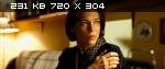 Человек у окна (2010/SATRip/1400Mb)