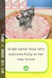 Petz Puppyz & Kittenz [USA] [NDS]