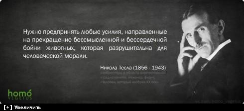https://i2.imageban.ru/thumbs/2013.10.10/e10db5f957369415b7b557ca81d14fa1.jpg