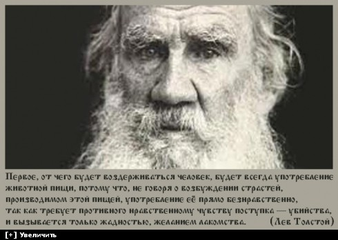 https://i2.imageban.ru/thumbs/2013.10.11/061f1ec9a9e2768da8fbed0b56673678.jpg