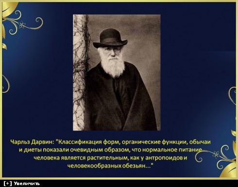 https://i2.imageban.ru/thumbs/2013.10.11/568ff811fed25a48d116044225fd3a65.jpg