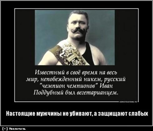 http://i2.imageban.ru/thumbs/2013.10.11/9e031a710561edd4bd933a386ab4e711.jpg