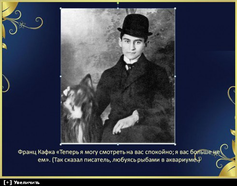 http://i2.imageban.ru/thumbs/2013.10.11/aa08751a9f513bfcdf891470fb0c8c38.jpg