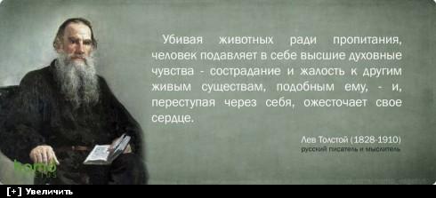 https://i2.imageban.ru/thumbs/2013.10.11/ac40ddd2595216a6e09d051f21a8246f.jpg