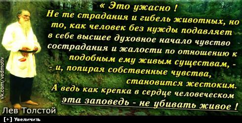 https://i2.imageban.ru/thumbs/2013.10.11/d0de4299c254374dd070ccb6b501641b.jpg