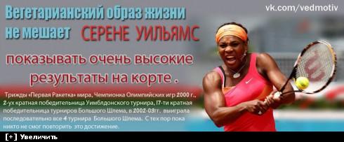 https://i2.imageban.ru/thumbs/2013.10.11/f0a4ee14f76284fcce6e5ce1d7bd8a2c.jpg