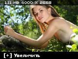 http://i2.imageban.ru/thumbs/2013.10.25/57fd8c7a27c69d3fa13571992c3b0d97.jpg