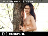 http://i2.imageban.ru/thumbs/2013.11.04/0ef2566b495cb8c456ea98bd7f0719ca.jpg