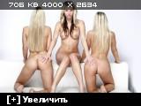 http://i2.imageban.ru/thumbs/2014.01.26/888815268e7d2a0f71261aba002d1e25.jpg