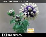 http://i2.imageban.ru/thumbs/2015.05.31/f73a99a7ebd3cd9d9716c455badff4de.jpg