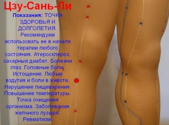 http://i2.imageban.ru/thumbs/2015.08.11/7d634c67ba293a8cdf5e0513ba99d9f6.jpg