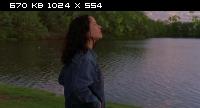Жаркое американское лето / Wet Hot American Summer (2001) BDRip-AVC от NNNB | P2