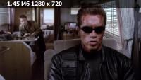 Терминатор 3: Восстание машин / Terminator 3: Rise of the Machines (2003) HDTVRip 720p | D, P, A | Open Matte