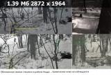 https://i2.imageban.ru/thumbs/2019.03.18/98ef425a5266aa0e533e6880cbe8e2d7.jpg
