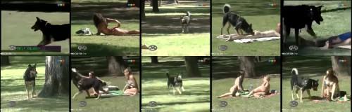 ddca10fbfe44da91a952ff2f9346a634 - Dog Licks Girls On Their Ass In Park