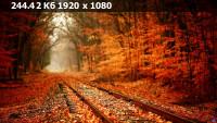 87b28392a6c6180046ea55c69f36454c.webp